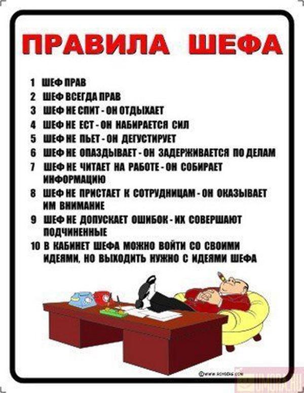 инфографика Правила шефа
