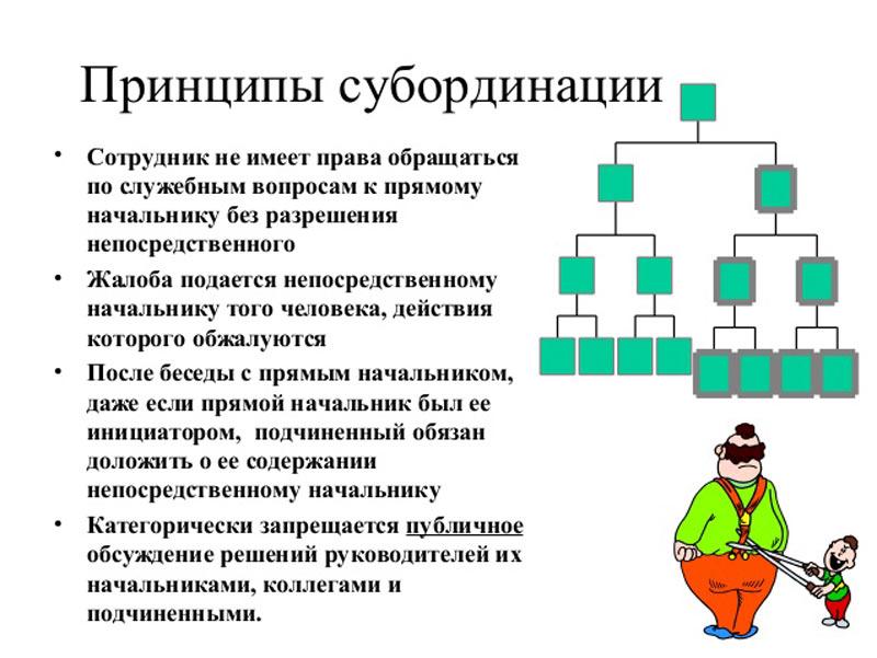 инфографика  Принципы субординации